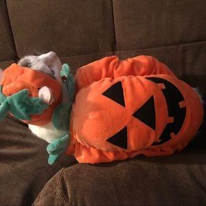 Zack & Zoey Pet Pumpkin Costume - size Small